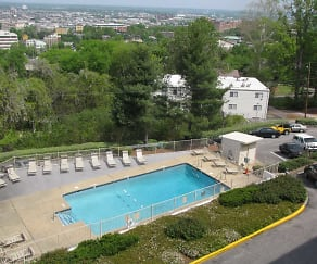 Pool, Terrace Apartments