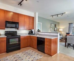 Delmas Park Apartments San Jose Ca 95126
