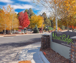 Community Signage, The Place at Forest Ridge Apartments