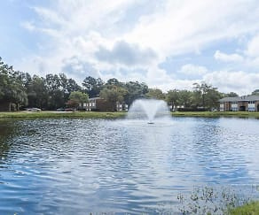 Lake, Lake Village