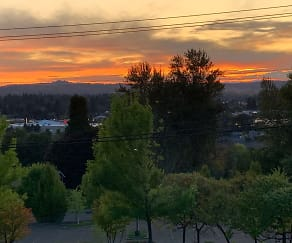 sunset from top.jpg, 9420 SE 92nd Ave.