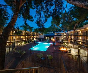 Pool, Treehouse