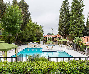 Pool, Sycamore Lane