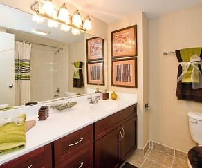 Bathroom, Twin Lake Towers Apartments