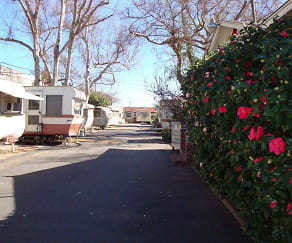 Park view, Shady Lane Trailer Park
