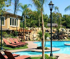 Pool, The Palms