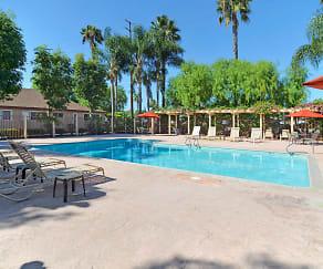 Pool, Ocean Park