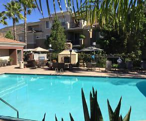 Pool, Canyon View