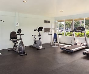 Fitness Weight Room, The Harbours