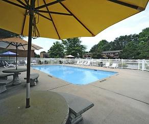 Pool, Springbrook