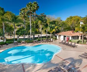 Pool, Solazzo Apartment Homes