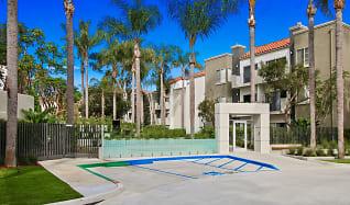 Pool, Playa Summit