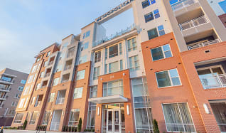 Amazing Downtown Raleigh Apartments For Rent 143 Apartments Home Interior And Landscaping Ferensignezvosmurscom