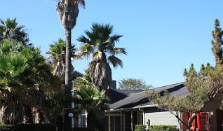 Building, Hammerly Oaks
