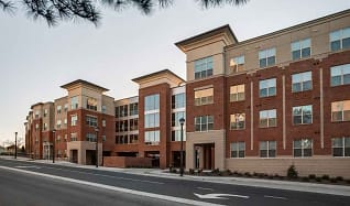Apartments for Rent in Greenville, NC - 162 Rentals ...