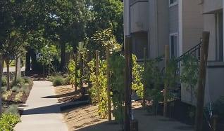Chardonnay Garden