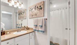 Bathroom, Kings Grant Landing