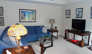 Living Room, 955  REGISTRY BLVD Unit #201