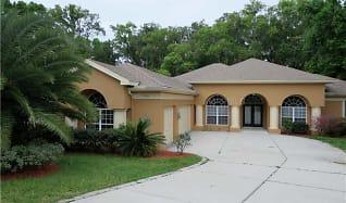 12246 Woodlands Cir, Ridge Manor, FL