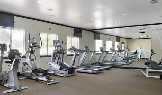 Fitness Weight Room, Park South At Deerwood