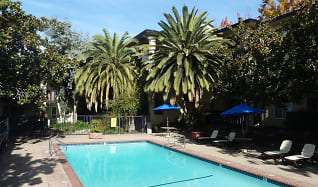 Pool, Mission Heights