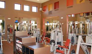 Fitness Weight Room, The Metro At Zanjero