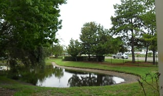 10020 Strafford Oak Ct Apt 919, Greater Northdale, FL