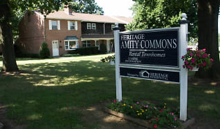 Landscaping, Amity Commons