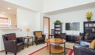 Living Room, Water Tower Place Apartments