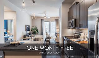 Wondrous 2 Bedroom Apartments For Rent In Richardson Tx 202 Rentals Download Free Architecture Designs Momecebritishbridgeorg