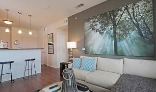 Living Room, Vue Live Oak