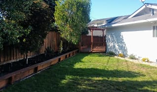 1001Backyard.jpg, 1330 Edinburgh Ct.