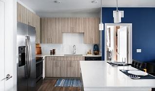 Solaya Luxury Apartments, Doctor Phillips, FL