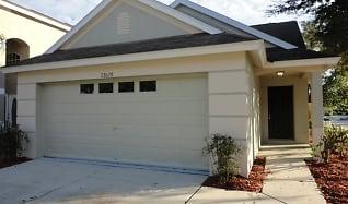 28628 Seashell Court, Santa Fe, Wesley Chapel, FL