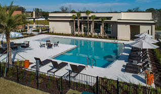 Pet Friendly Apartments for Rent in Gainesville, FL