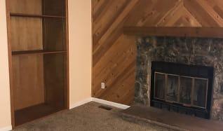 Depew Wood burning Fireplace & Bookshelf.JPG, 7700 Depew St #1514