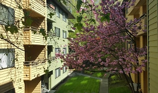 West Seattle Apartments for Rent - Seattle, WA   ApartmentGuide com