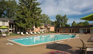 Pool, Farmington Oaks