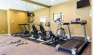 Fitness Weight Room, Novela