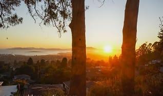 8215 Terrace Dr, Rollingwood, CA