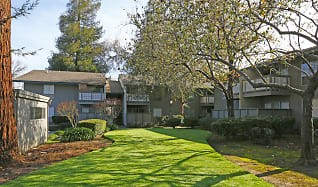 Landscaping, Coffeetree Apartments