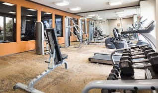 Fitness Weight Room, The Venue at Greenville