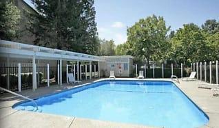 Pool, Antelope Creek