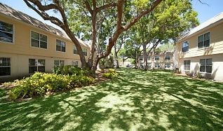 Apartments for Rent in St Petersburg College, FL - 133