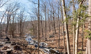 Creek.png, 43 Trail of the Hemlocks
