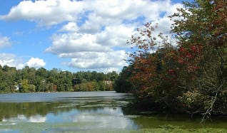 The View of Mohegan Lake from The Landing by GDC, The Landing on Mohegan Lake