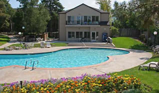 Pool, The Brittany Apartments