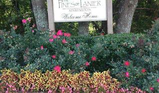 Community Signage, Pines of Lanier