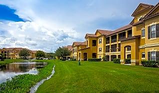 Apartments For Rent In Wesley Chapel Fl 143 Rentals