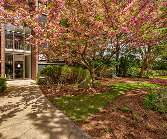 Blair Pond Estates, Arlington, MA